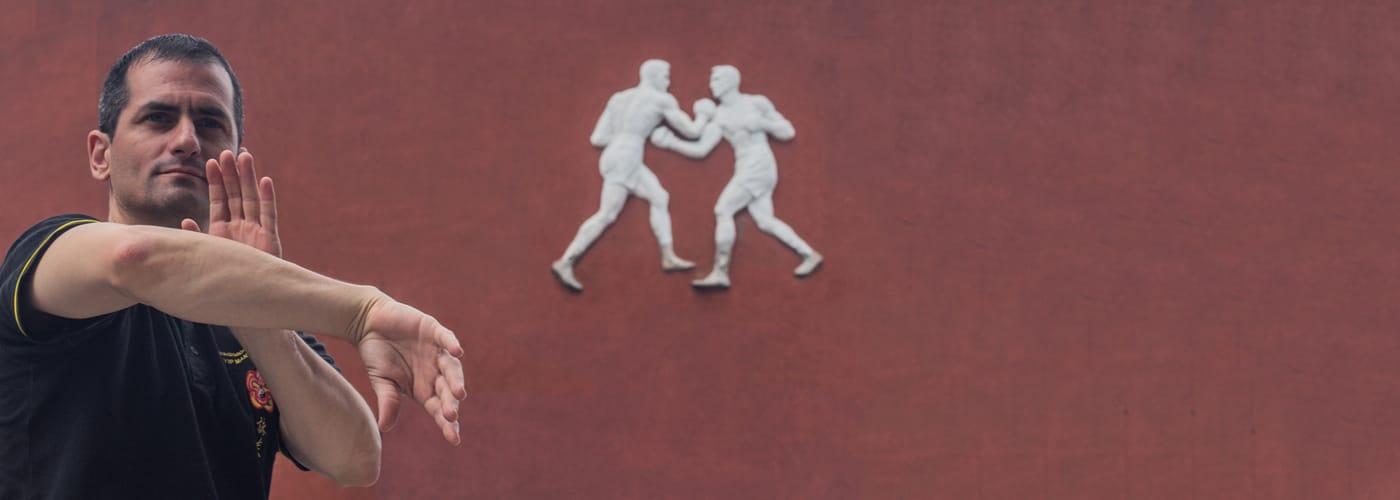 Ip Man Foshan Wing Chun