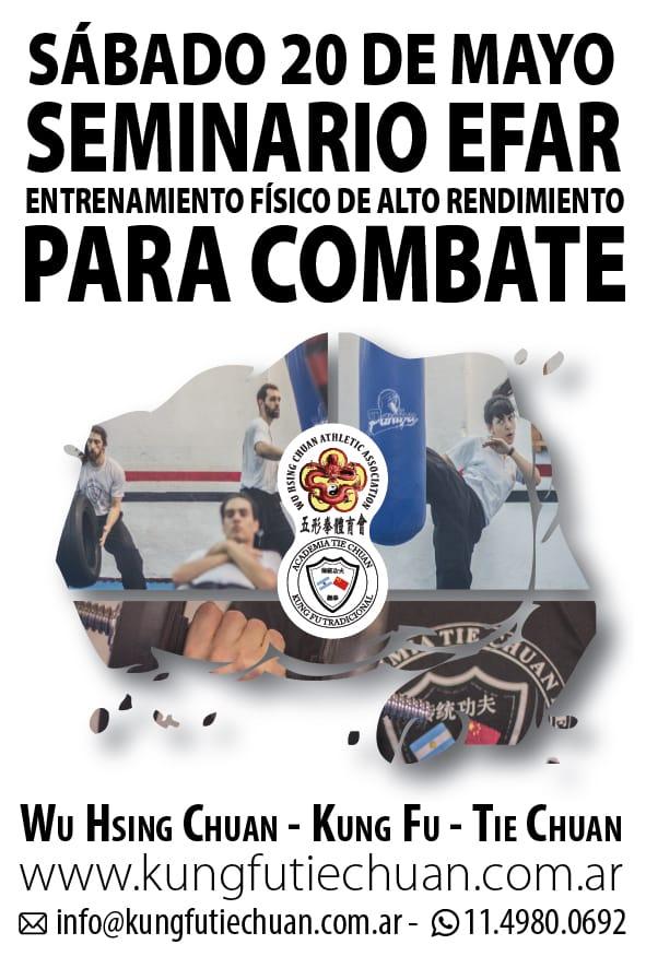 20052017 Seminario EFAR Combate